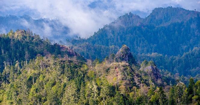 #Green Yunnan# Breathtaking aerial views of Yunnan forest