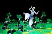 Yunnan artists shine at national dance exhibition