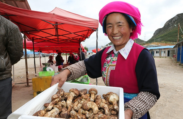 Yunnan to remove 15 counties from impoverished list