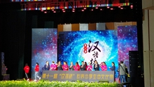 11th Chinese Bridge launched in Kunming