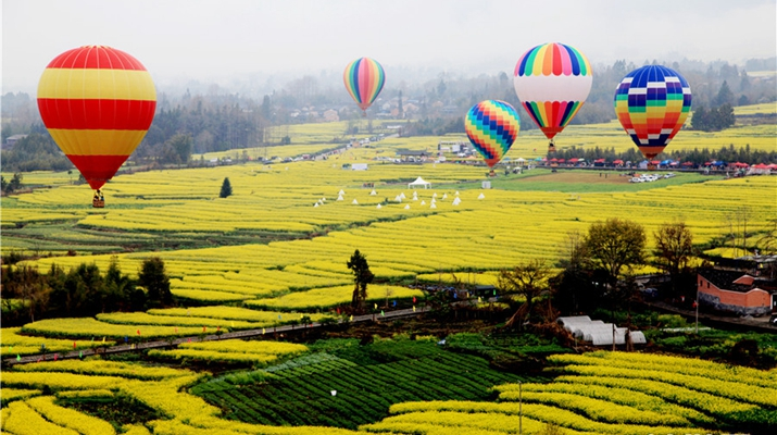 In pics: Rape-seed flowers in blossom under Mt. Gaoligong