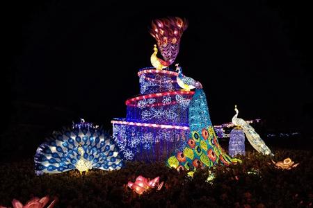 Light show adds diversity to night tour at Kunming World Horti-Expo Garden