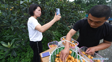 Rural e-commerce gains momentum in China