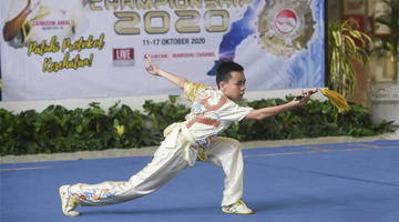 Virtual Wushu Championship held amid COVID-19 pandemic in Indonesia
