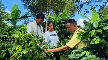 Starbucks extends support to coffee farmers in Yunnan